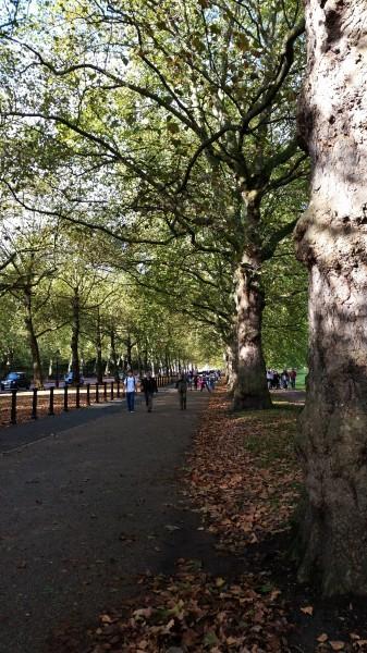 Hyde Park Sidewalk